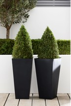 Set Of 2 Charcoal 60cm Lightweight Metal Planters