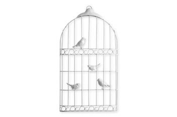 Brushed Silver Effect Bird Cage Wall Plaque