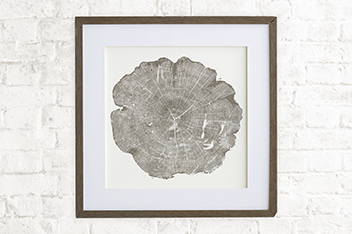 Country Luxe Tree Cross Section Print