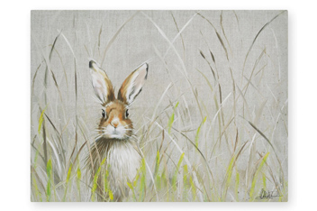 Hare Canvas