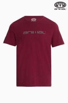 Animal Classico Tawny Purple Graphic T-Shirt
