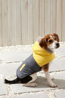 Puffa Jacket Dog Coat