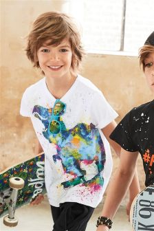 Dinosaur Paint Splat T-Shirt (3-16yrs)