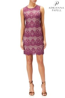 Adrianna Papell Red Scalloped Lace Shift Dress