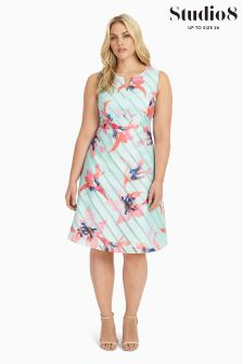 Studio 8 Multi Zannah Dress