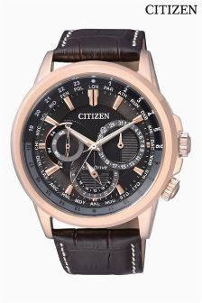 Citizen Eco Drive® Calendar Watch