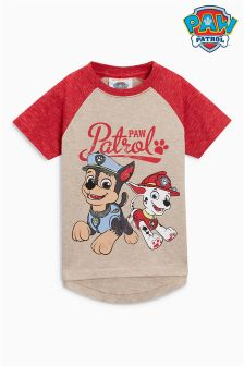 Short Sleeve Paw Patrol Raglan Top (3mths-6yrs)
