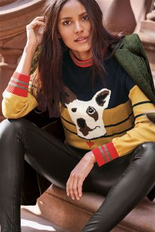 Colourblock Dog Sweater