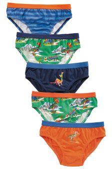 Dino Briefs Five Pack (1.5-8yrs)