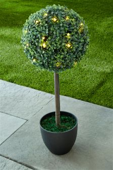 Solar Topiary Lit Tree