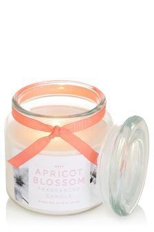 Apricot Blossom Fragranced Glass Jar