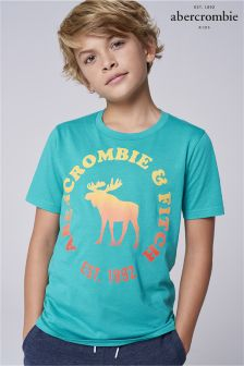 Abercrombie & Fitch Green Moose T-Shirt