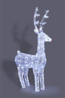 Lit Rudolph