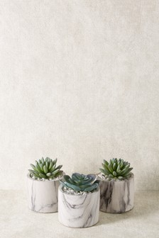 Set of 3 Marble Effect Succulent Pots