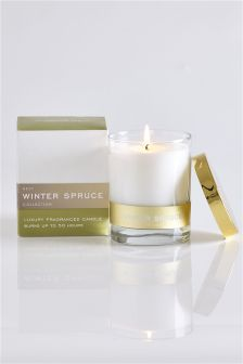 Winter Spruce Collection Luxe Candle