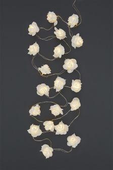 20 Rose Line Lights
