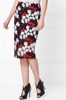Lace Embroidered Skirt