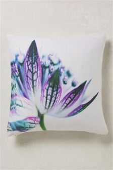 Photographic Floral Cushion