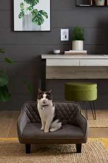 Coast Blue Numero Jacquard Dress