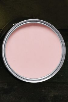 Pale Rose Matt Emulsion Tester