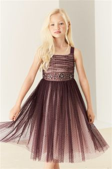 Embellished Tulle Dress (3-14yrs)