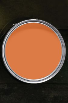 Florida Orange  Matt Emulsion