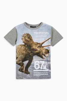 Triceratops T-Shirt (3-16yrs)