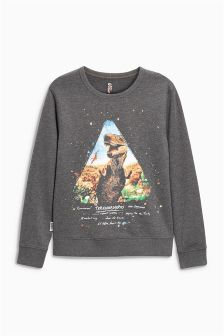 Dino Crew Neck Sweat (3-16yrs)