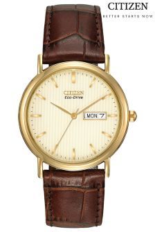 Gold Citizen Eco Drive® Mens Strap Watch