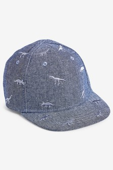 Chambray Dinosaur Cap (Younger Boys)
