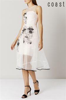 Coast Champagne Hally Organza Dress
