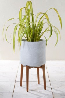 Tall Concrete Planter With Wooden Legs