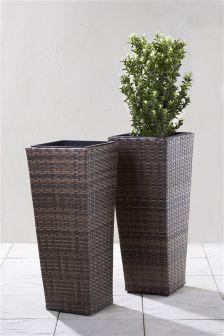 Set Of 2 Espinosa Planters