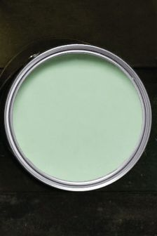 Mint Matt Emulsion