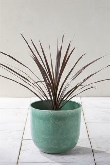 Green Reactive Glaze Planter
