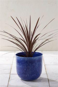 Blue Reactive Glaze Planter