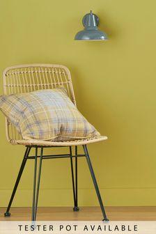 Yellow Ochre Matt Emulsion Tester