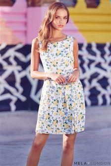 Mela Sleeveless Floral Print Skater Dress