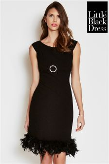 Little Black Dress Feather Detailed Dress