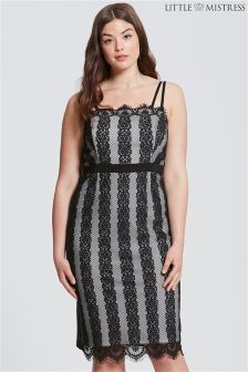 Little Mistress Curve Striped Lace Bodycon Dress