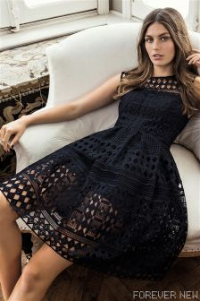 Forever New Crochet Lace Dress