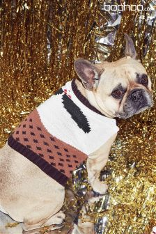 Boohoo Christmas Pudding Dog Jumper