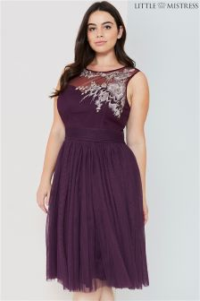 Little Mistress Curve Embroidered Midi Dress