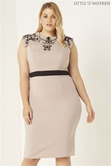 Little Mistress Curve Embroidered Bodycon Midi Dress